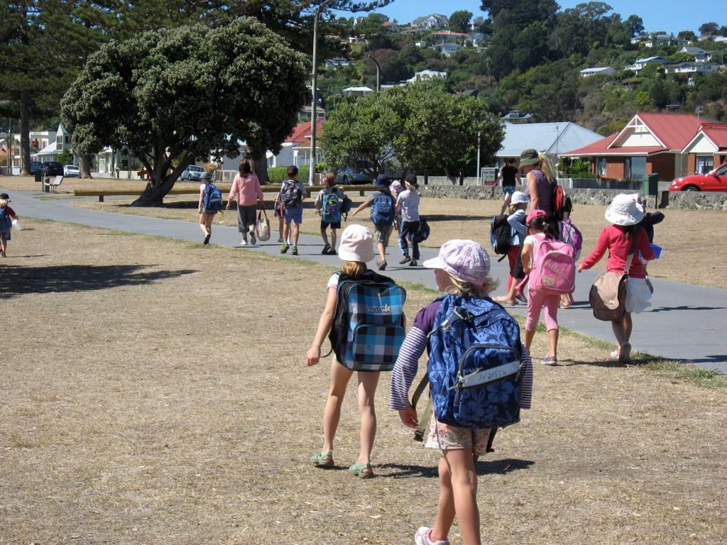 Montessori Primary Class out and about in Napier