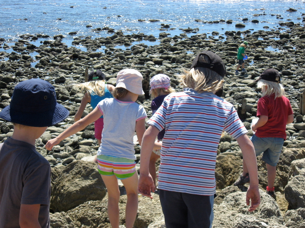 Port Ahuriri Primary Montessori Class at the rocky shore