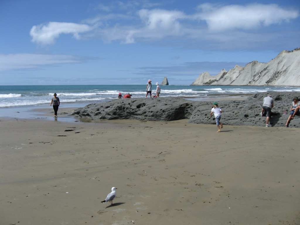Port Ahuriri Primary Montessori Class at Cape Kidnappers