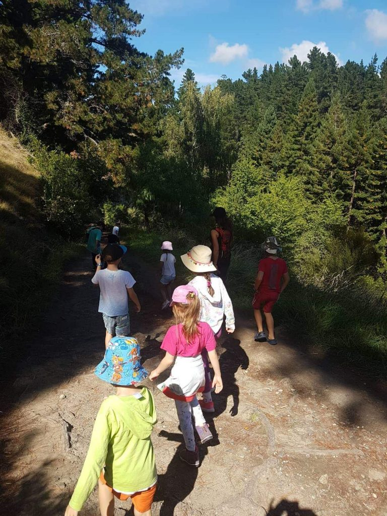 Montessori class at Port Ahuriri Primary School walking at Te Mata Peak, Hawkes Bay