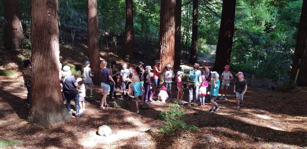 Port Ahuriri School Montessori Class at the redwoods on Te Mata Peak, Hawkes Bay